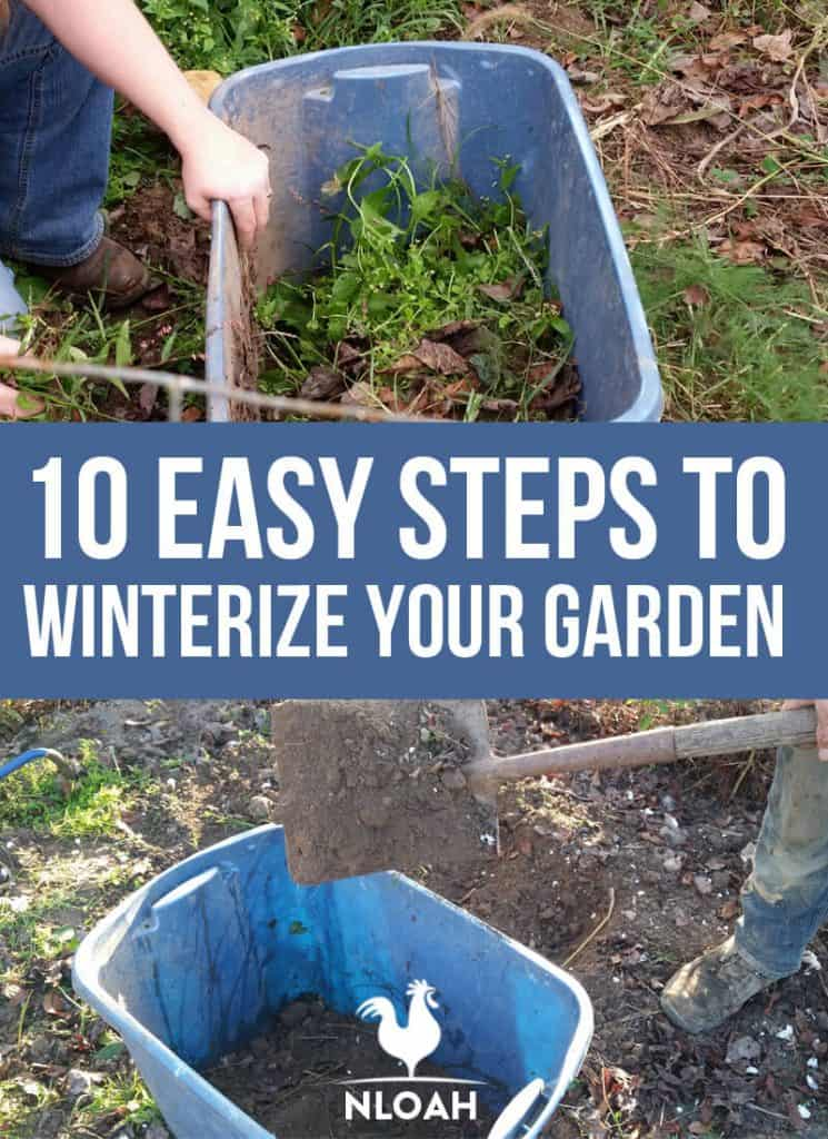 winterizing garden Pinterest image