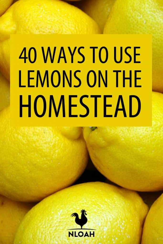 using lemons homestead pin