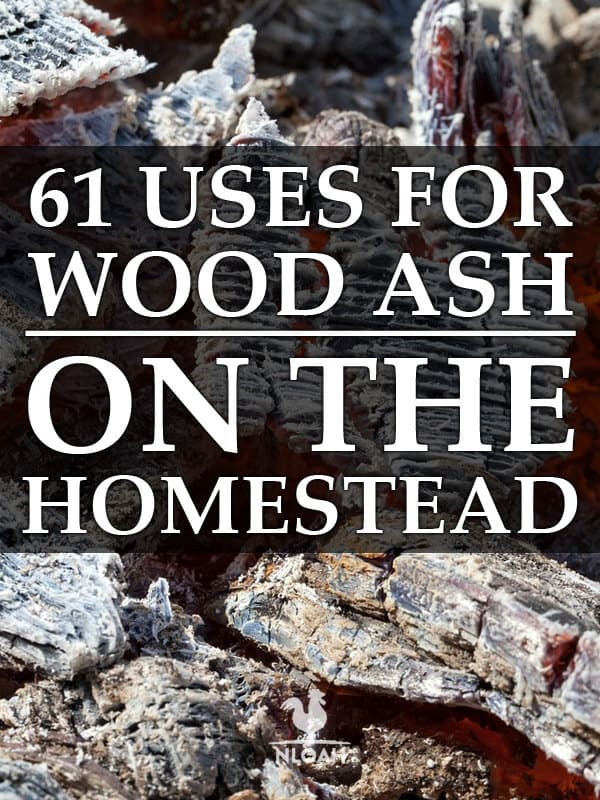 wood ash uses Pinterest