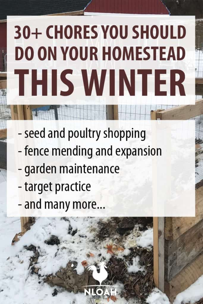 winter homesteading chores Pinterest