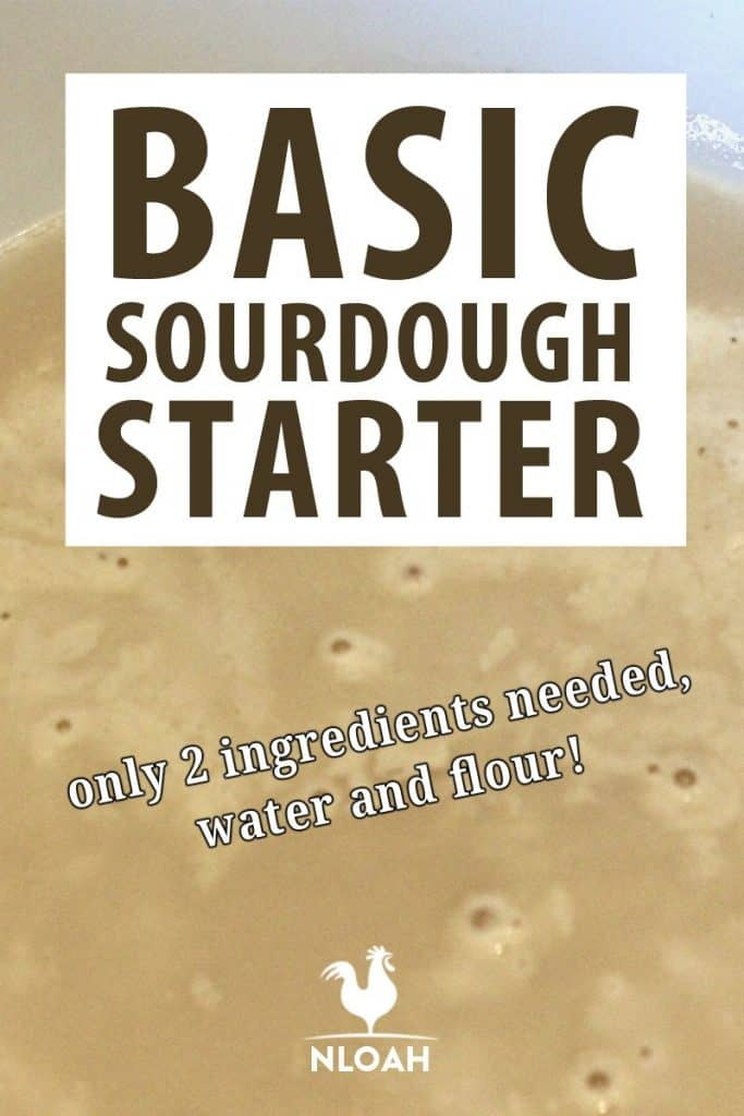 sourdough starter Pinterest image