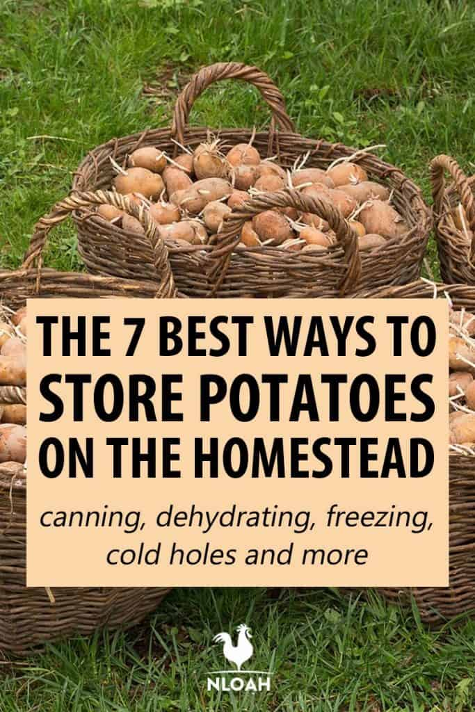 potato storage pinterest