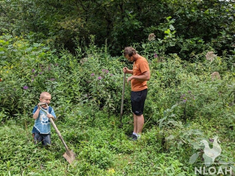 boy and young man digging