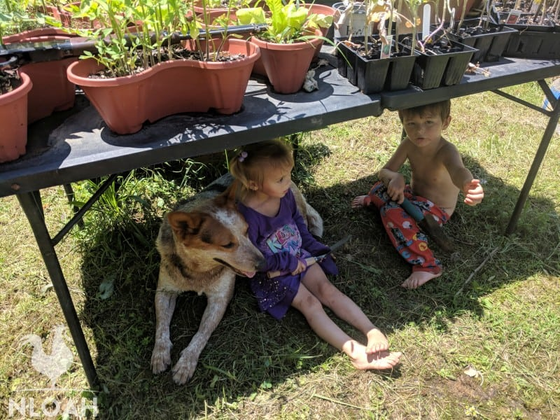 two kids and a dog under a table with pots