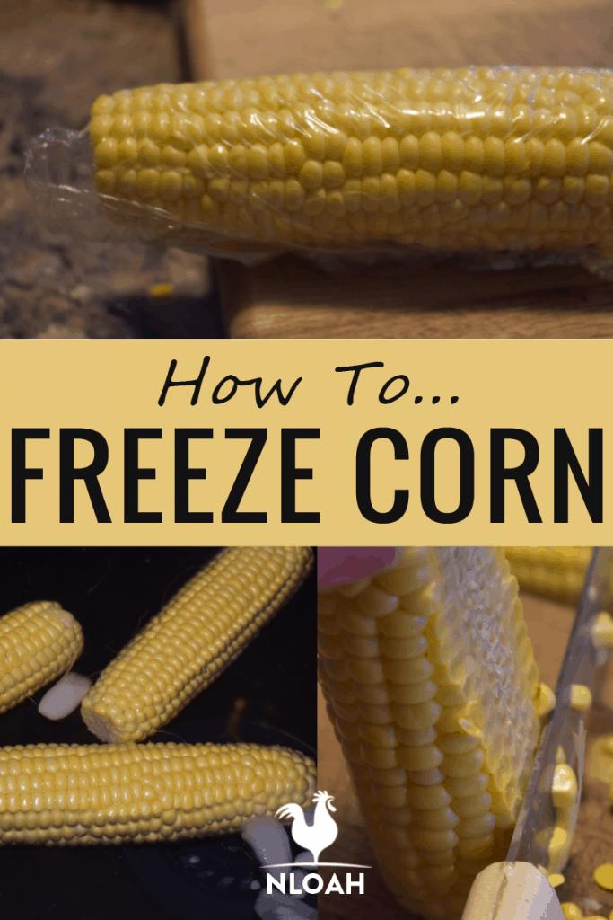 freezing corn pinterest