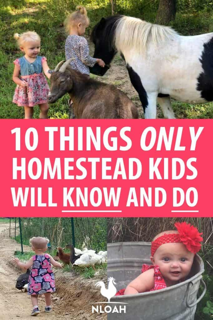 things homestead kids do Pinterest image