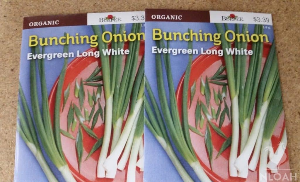 green onion seed packets