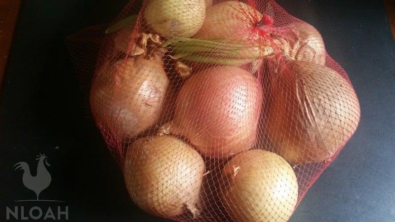 onions in plastic mesh