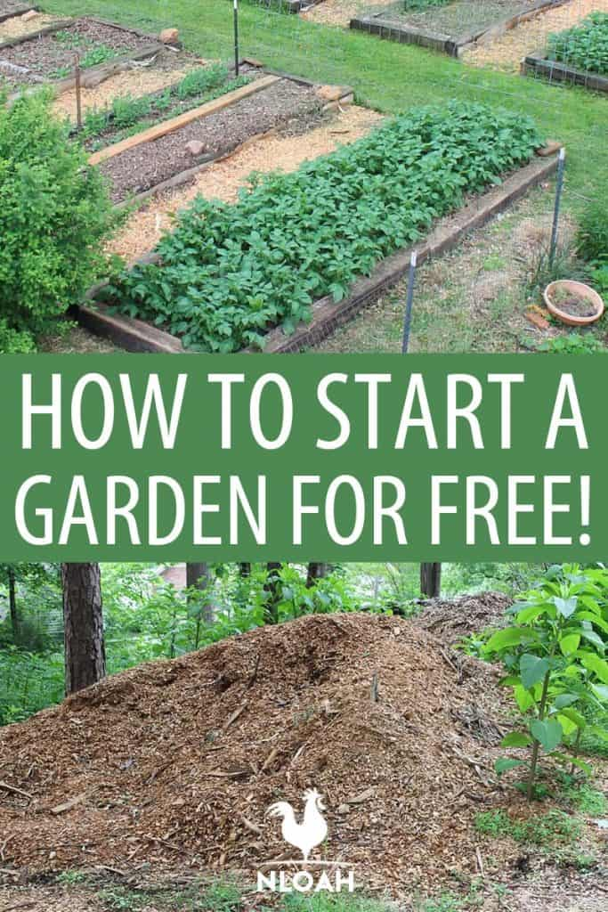 starting a garden for free Pinterest