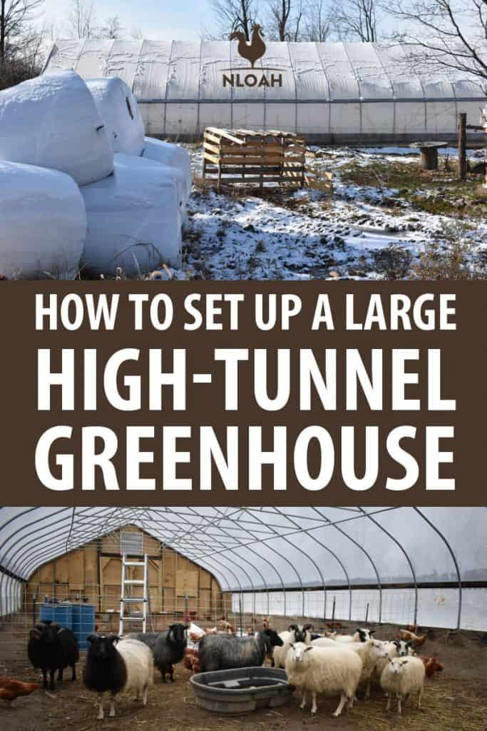 DIY greenhouse setup Pinterest image