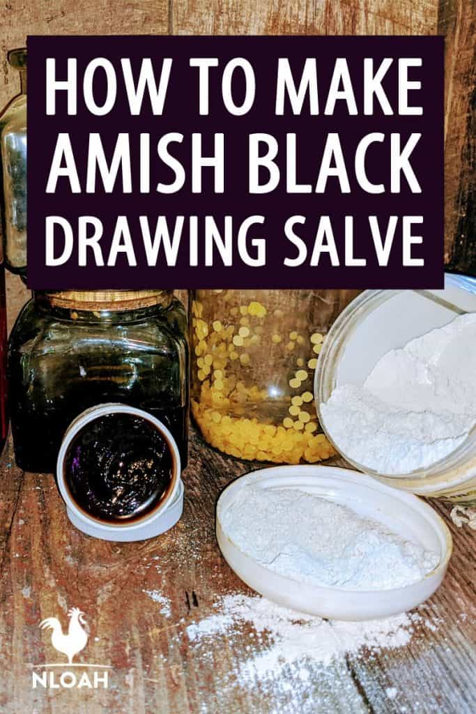 amish black salve pinterest