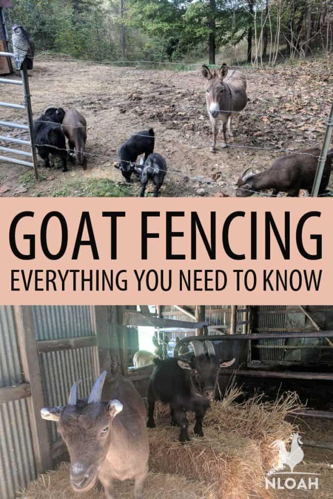 goat fencing Pinterest image