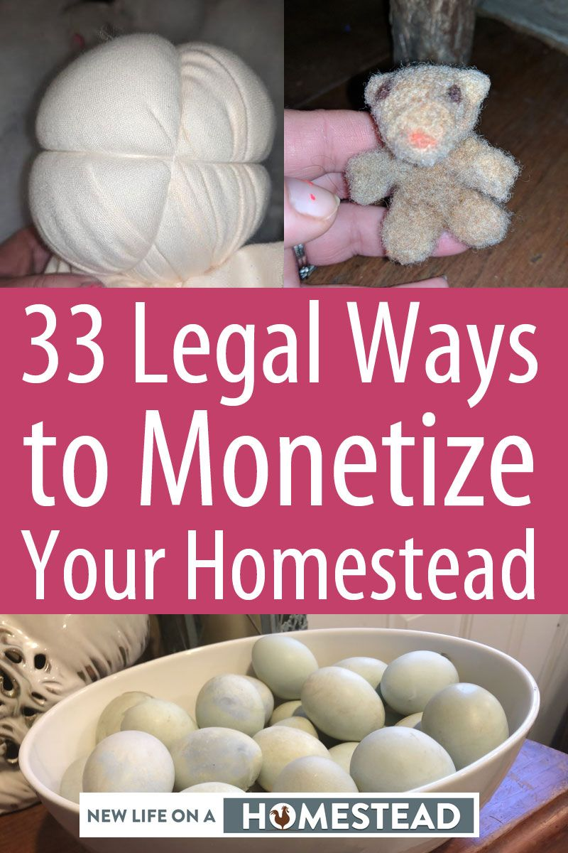homestead monetization pinterest image