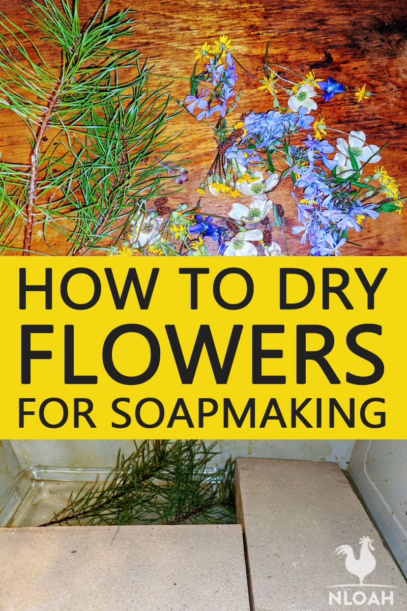 drying flowers soapmaking pinterest
