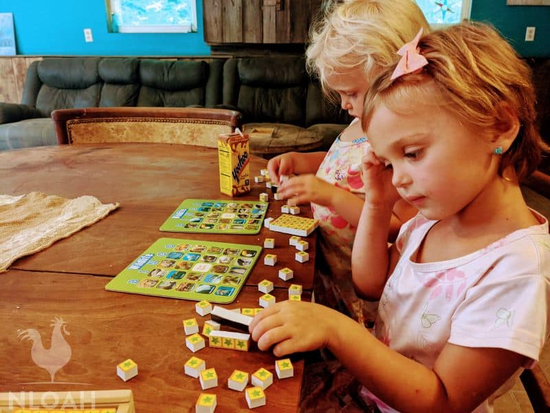 kids playing wildlife bingo