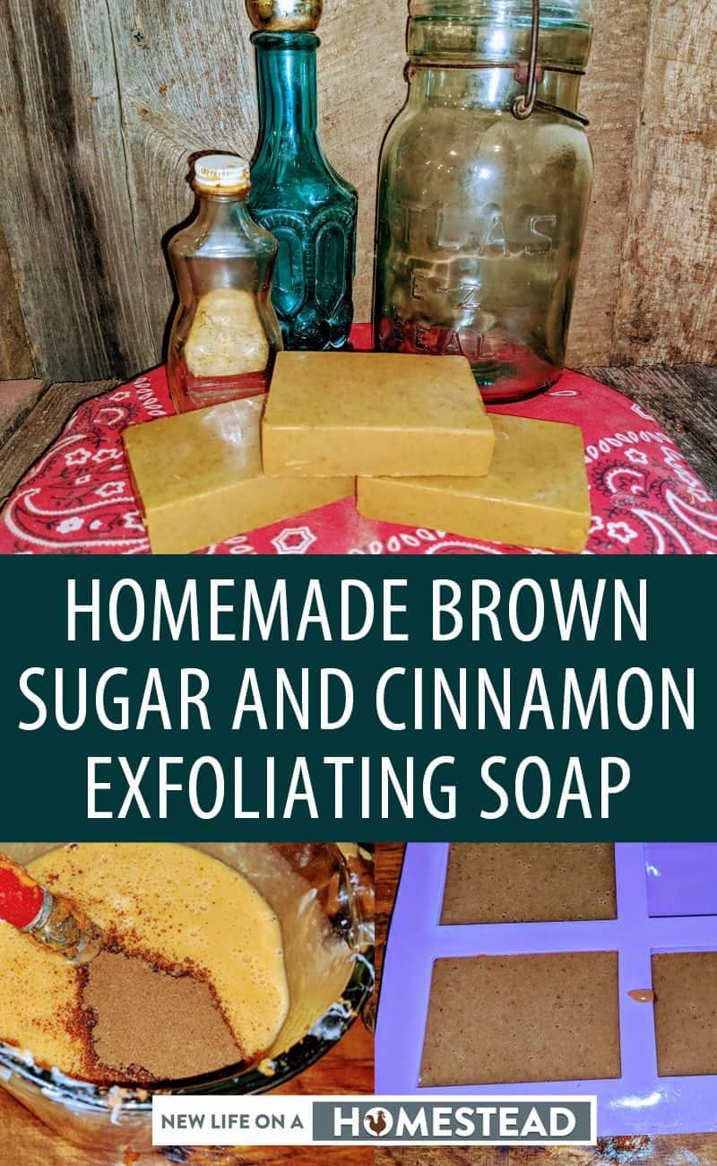 brown sugar cinnamon soap pinterest image