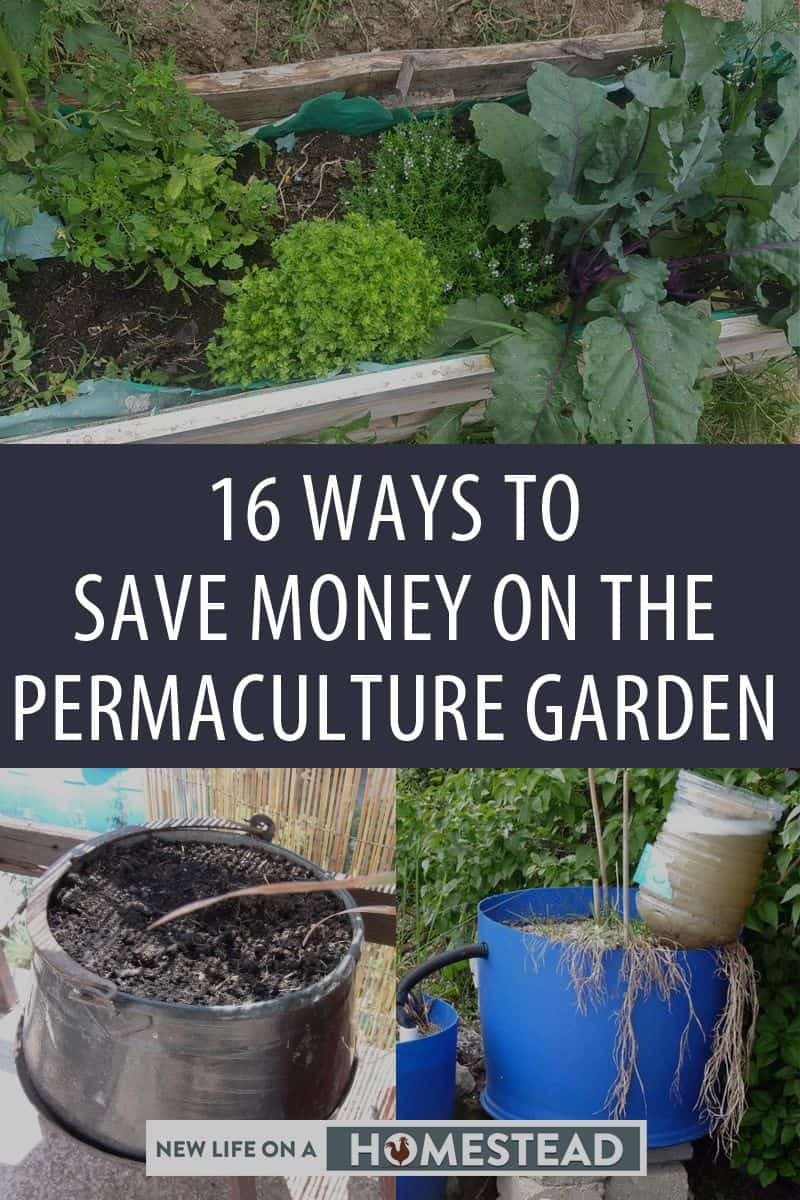permaculture frugality pinterest image