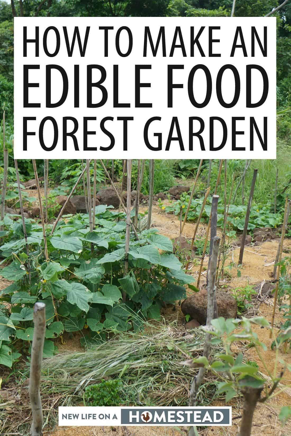 food forest Pinterest image