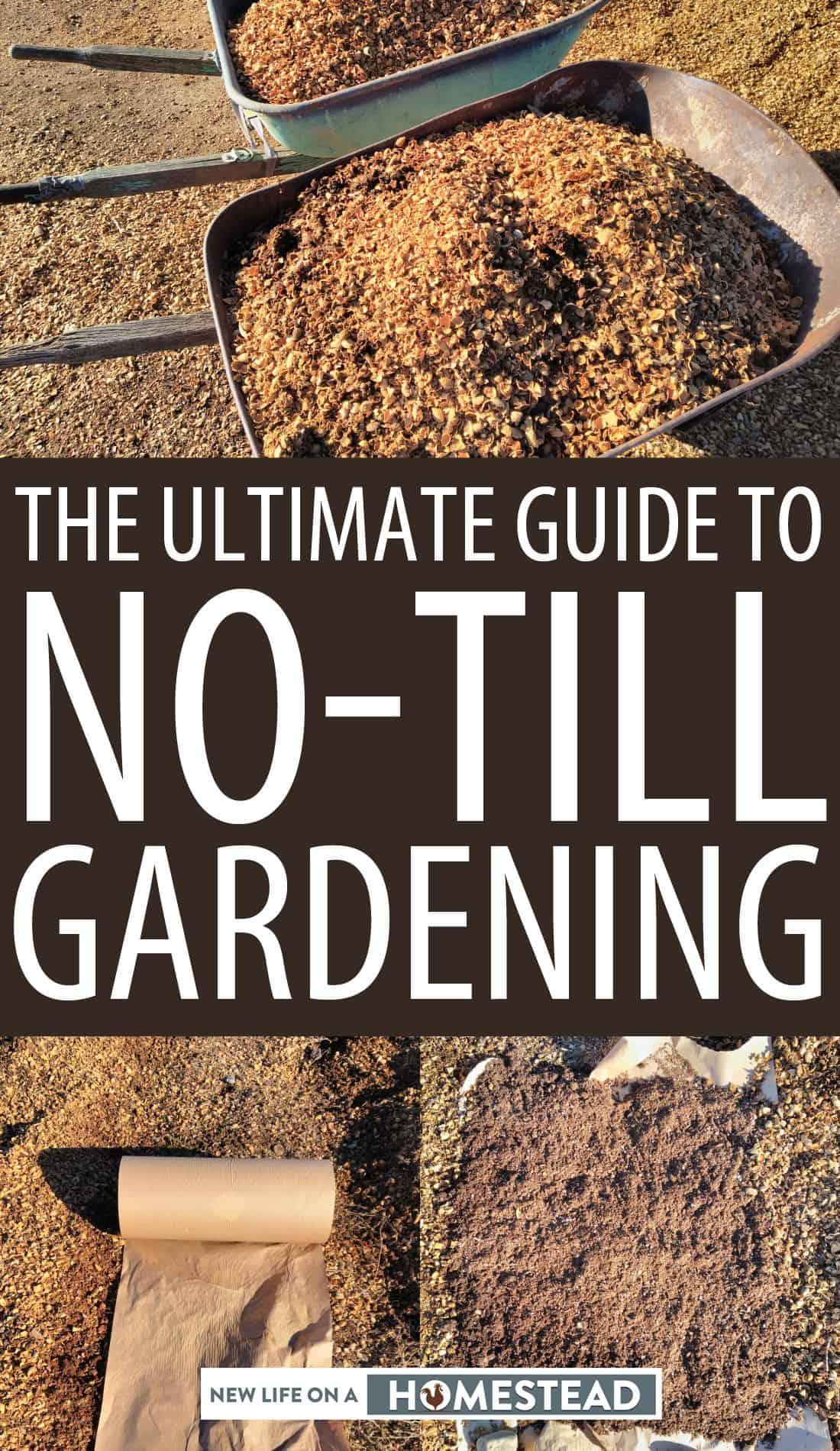 no-till gardening pinterest