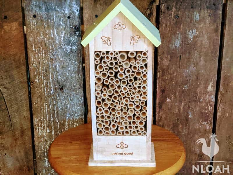 mason bee tube house