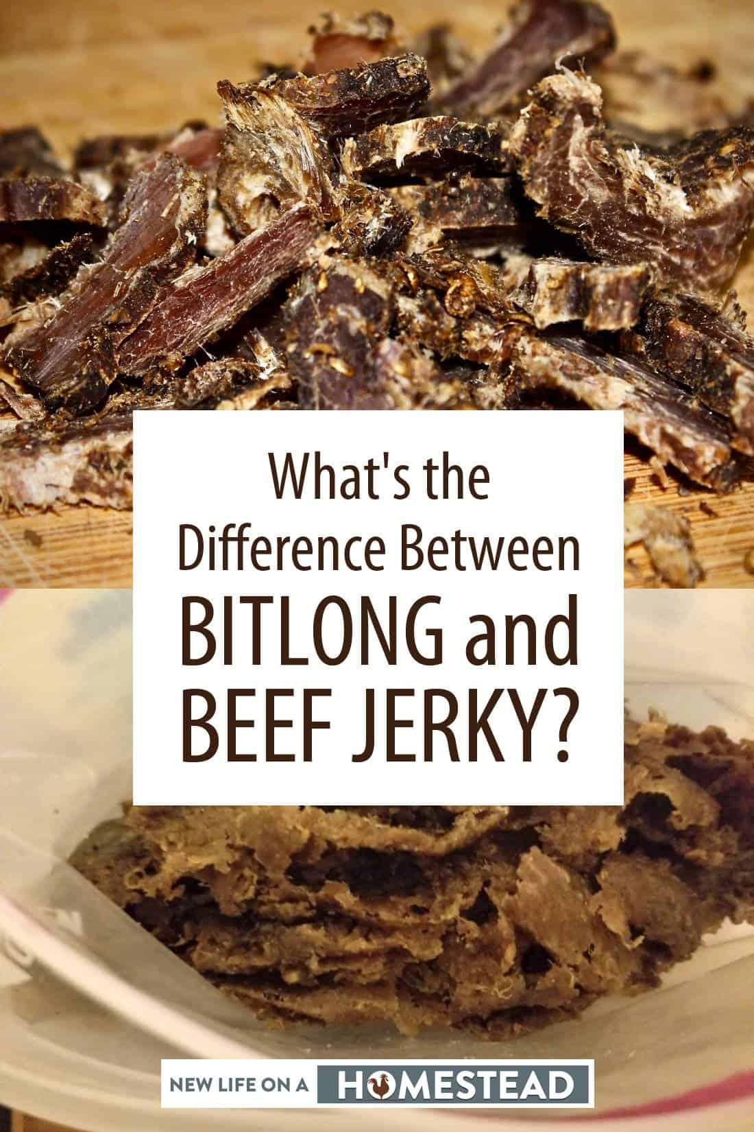 biltong vs. beef jerky pinterest image