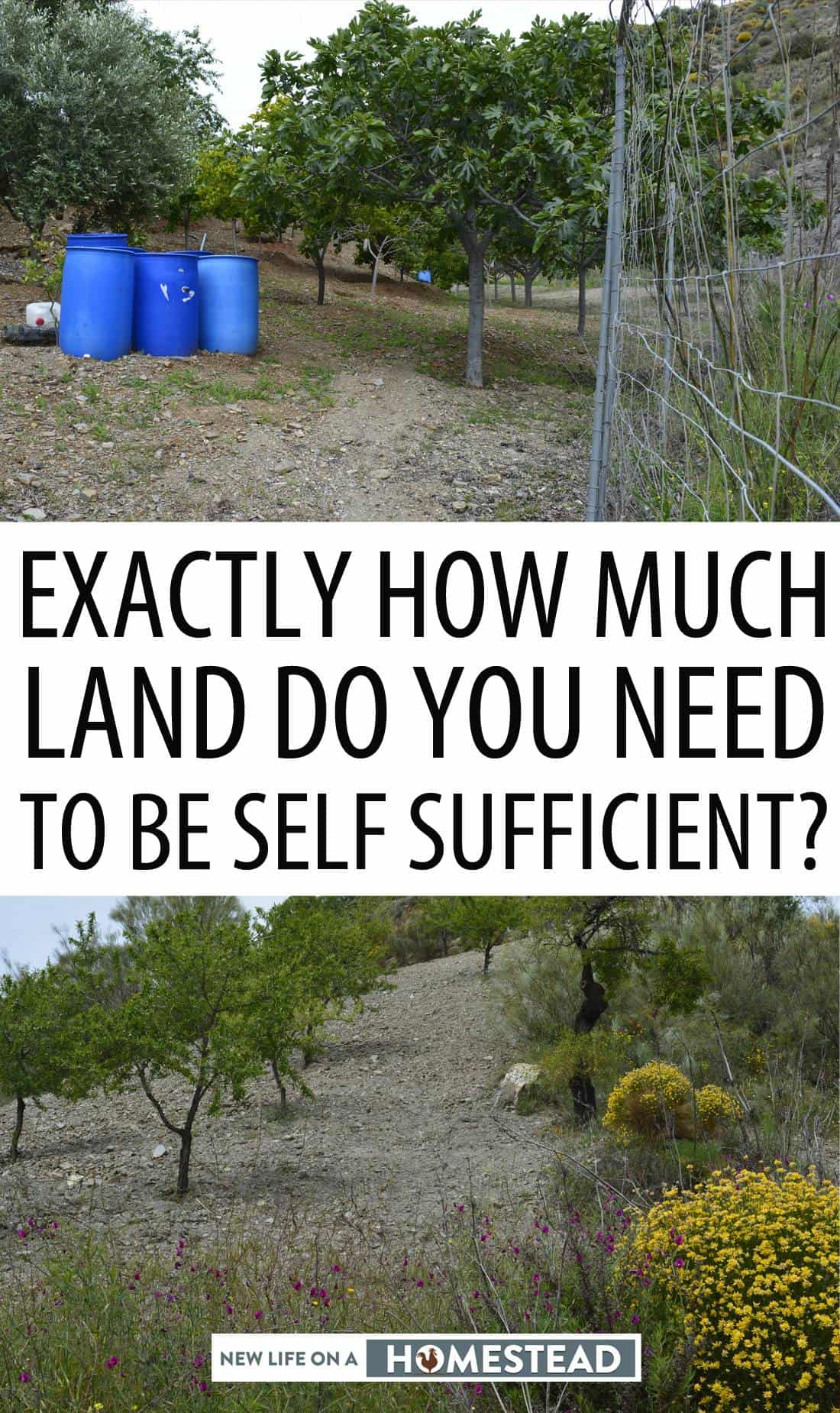 land for self-sufficiency pinterest image