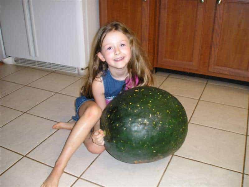 little girl holding a huge watermelon