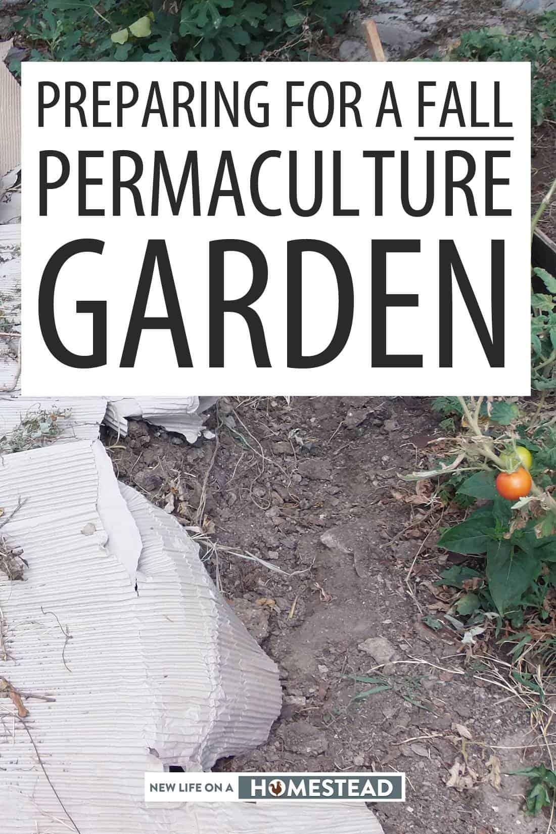 fall permie garden Pinterest