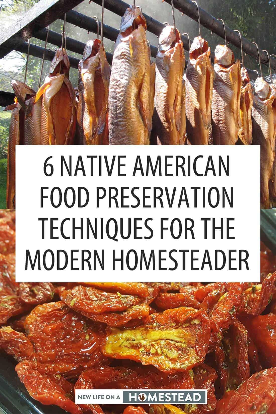 native american food preservation pinterest