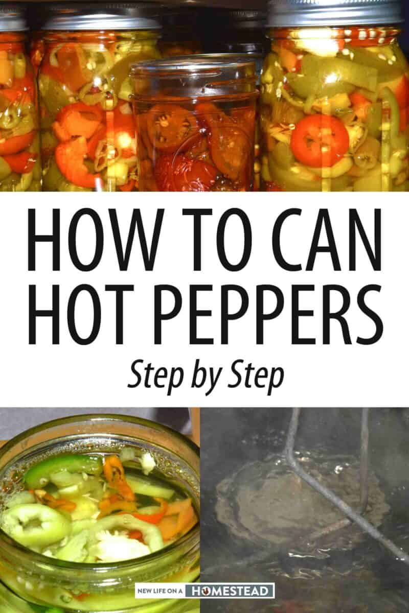 canned hot peppers Pinterest image