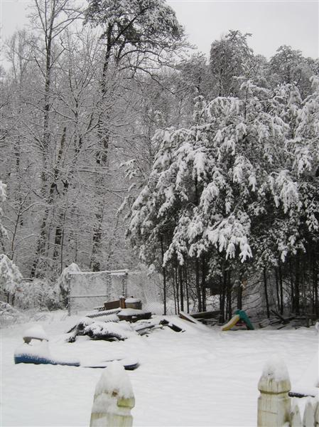 snow on the homestead