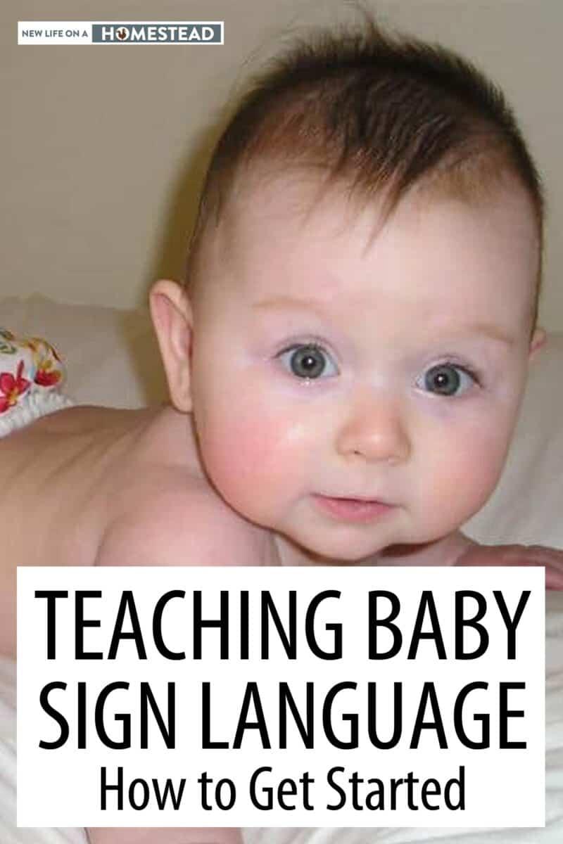 baby sign language Pinterest image