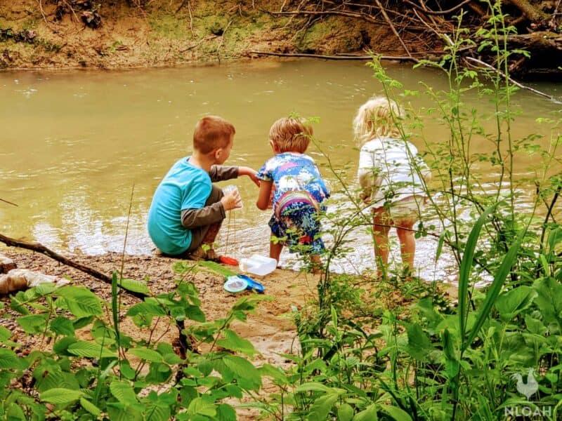 children play-learning near creek