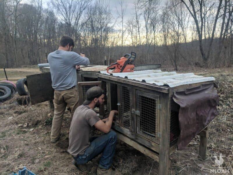 dismantling rabbit hutch